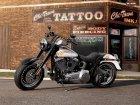 Harley-Davidson Harley Davidson FLSTFB Softail Fat Boy Lo 110th Anniversary